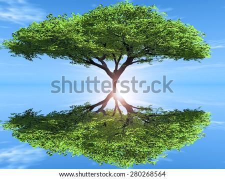 the green tree and reflection - stock photo