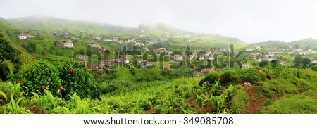 The green valley of Nova Sintra filled with hibiscus plant and corn crops during the agriculture season on the island of Fogo, Cabo Verde