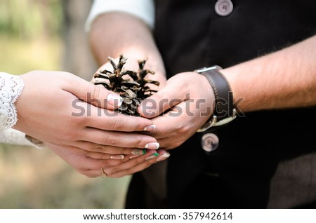 the groom and the bride hold hands-the arc with pine cones in forest