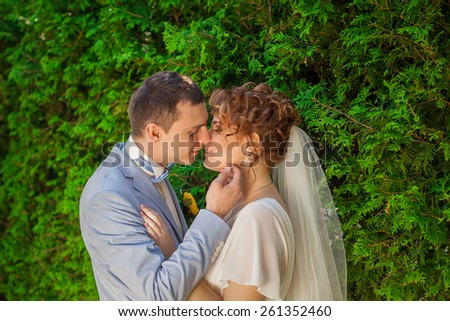 The groom kisses his bride while her eyes closed.Portrait of the groom in the park on their wedding day.Svadba- beautiful bride and groom smiling at each other holding hands    - stock photo