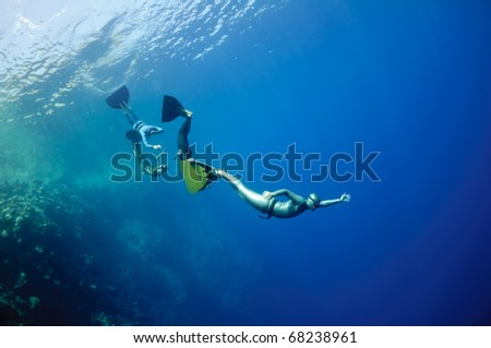 The group of freedivers try to dive in a line, catching each other by monofin, near the coral reef at the depth of Blue Hole. Read Sea, Egypt. - stock photo