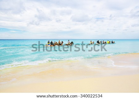 The group of tourists riding horses in Caribbean sea on Half Moon Cay. - stock photo