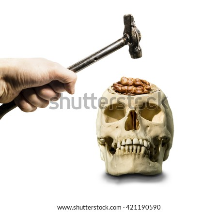 The hand with the hammer hovered over the open skull with the brain in the form of a walnut on a white background - stock photo