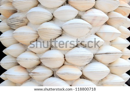 The handicrafts produced by the seashell background. - stock photo
