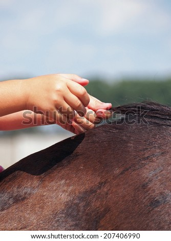 The hands of child, sitting on the horse back, hold on to the mane - stock photo