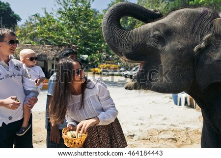 The happinest family feeds an elephant