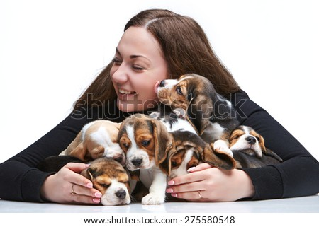 The happy  woman and big group of a beagle puppies on white background