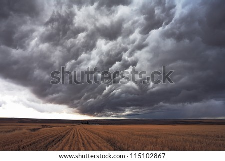 The harvest in the fields of Montana. The enormous storm cloud covered the sky