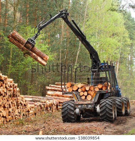 The harvester working in a forest. - stock photo