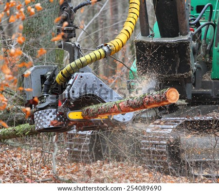 The harvester working in a forest. Closeup with shallow DOF.  - stock photo