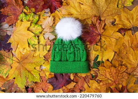 The hat on a background of yellow foliage - stock photo