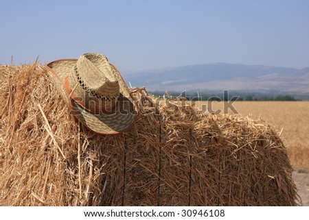 The hay and hat - stock photo