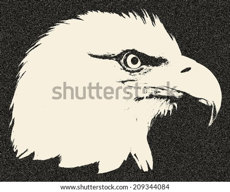 The head of a bald eagle, haliaeetus leucocephalus. Side face portrait of an American eagle, US national character. Great for user pic, icon, label or tattoo. Amazing illustration in grunge style. - stock photo