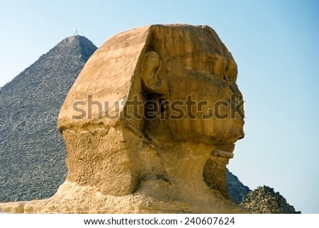 The head of the Sphinx in the background of the Cheops pyramid - stock photo
