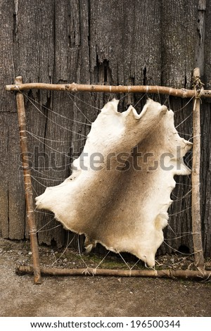 Animal Pelt Stock Images Royalty Free Images Amp Vectors