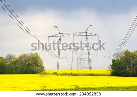 The high-voltage power line on field rapeseed - stock photo