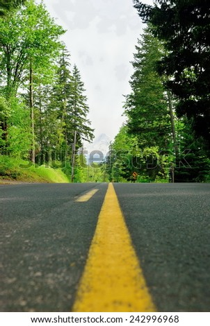 The highway in the wood. Ahead snow mountain - stock photo
