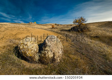 The hill valley landscape with a tree on a rock - stock photo
