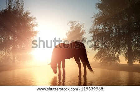 The horse on the river in the sunshine. - stock photo