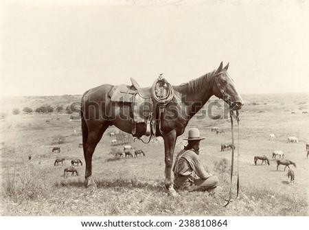 The Horse Wrangler, photograph by Erwin E. Smith, June 24, 1910 - stock photo