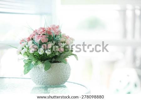 The houseplant - stock photo