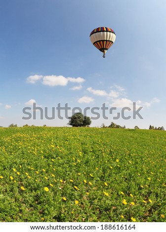 The  huge field with blooming buttercups and flying in the sky, beautiful multicolored balloon. The wonderful spring day in southern Israel