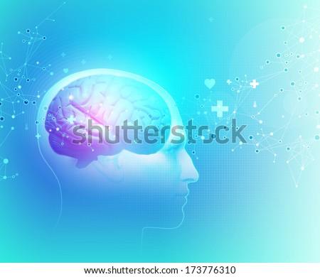 The Human Body - Brain - stock photo
