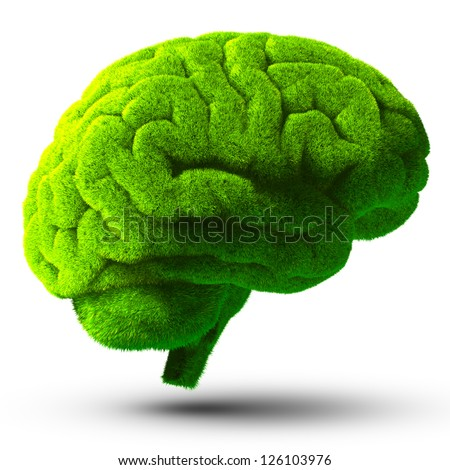 The human brain is covered with green grass. The metaphor of the wild, natural or imperfect intelligence. Isolated on white background with shadow