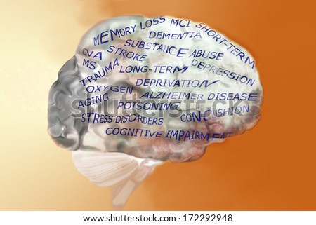 The human brain with memory loss causes and issues - stock photo