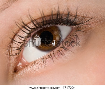 the human wide open brown eye macro