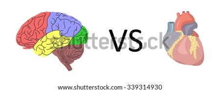 the illustration dedicated to the  human brain and heart. - stock photo