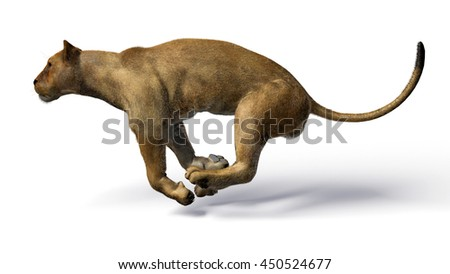 The image of a lioness 3D illustration