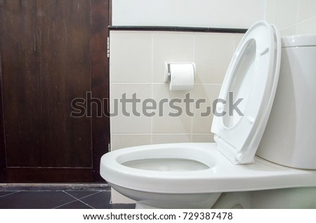 The image of flush and sanitary in clean restroom of home or office.