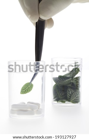 the image of science and testing leaves