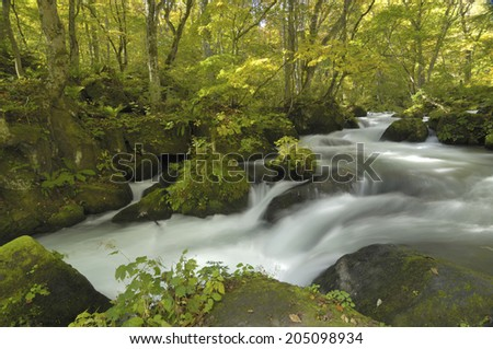 The Image Of The Flowing Water Of Stream