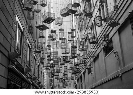 the impressive bird cage alley in sydney - stock photo