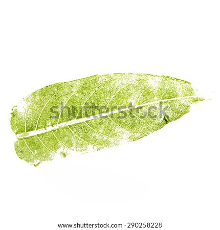The imprint of a green leaf isolated on white background