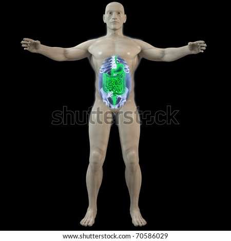 the inner man by X-rays. 3d image.