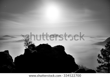 The island with tree in misty ocean. Full moon night in a beautiful mountain landscape . Sandstone peaks  increased from heavy creamy fog.