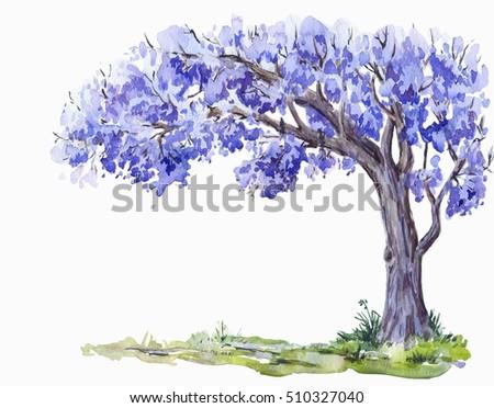 Jacaranda Trees Watercolor Sketch Stock Illustration 510327040