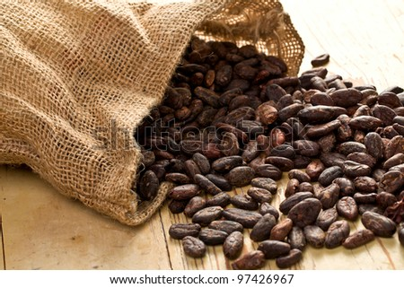 the jute bag with cocoa beans on wooden table
