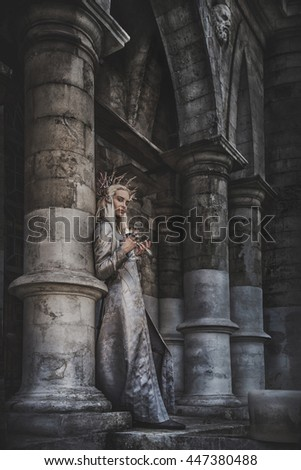 The king of elves in old ruined city