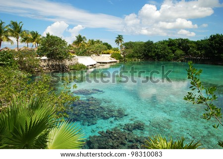 The lagoon of fresh water just next to Caribbean Sea in ecological park on Cozumel island (Mexico).