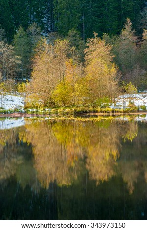 The lake Sankenbachsee in autumn near Baiersbronn, Black Forest, Baden-Wurttemberg, Germany, Europe