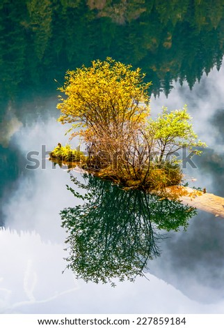 The lake with submerged tree trunks. Jiuzhaigou Valley was recognize by UNESCO as a World Heritage Site and a World Biosphere Reserve - China - stock photo