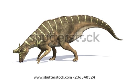 The Lambeosaurus was a dinosaur that lived during the Cretaeous Period - 3d render.