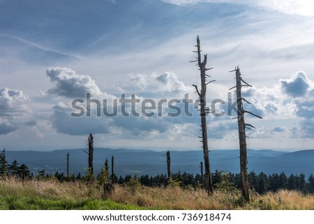 The landscape of mountain in Harz, Germany