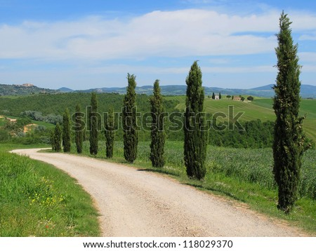 The landscape of the Val d'Orcia with Pienza and Capella di Vitaleta in the background. Tuscany. Italy