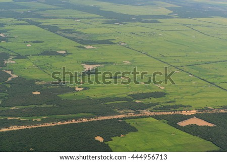 The Landscape with a ricefield near the City of Siem Riep in the west of Cambodia.