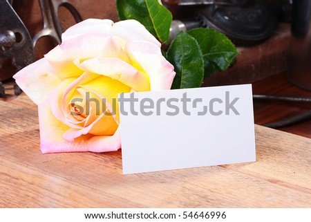 The large it is yellow a pink rose in a workshop on a working workbench with an empty piece of paper for placing on it of a congratulation or messages.